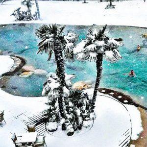 biodesign pools inverno