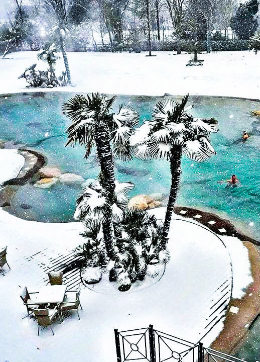 Beautiful during winter